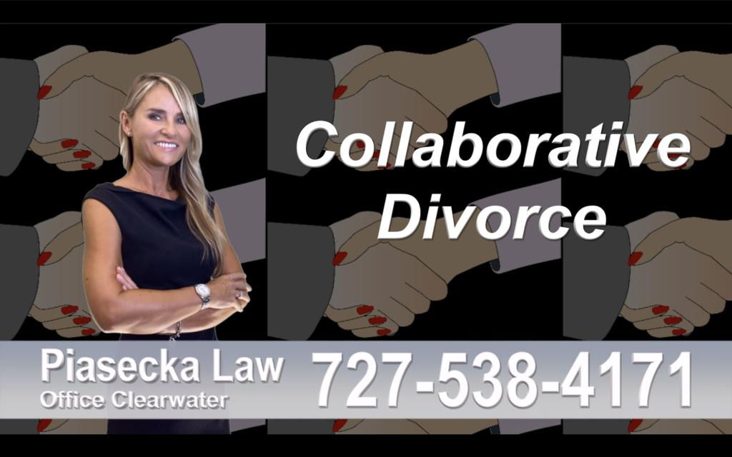 Divorce Attorney Clearwater Florida, Collaborative, Divorce, Attorney, Agnieszka, Piasecka, Prawnik, Rozwodowy, Rozwód, Adwokat, Najlepszy Best