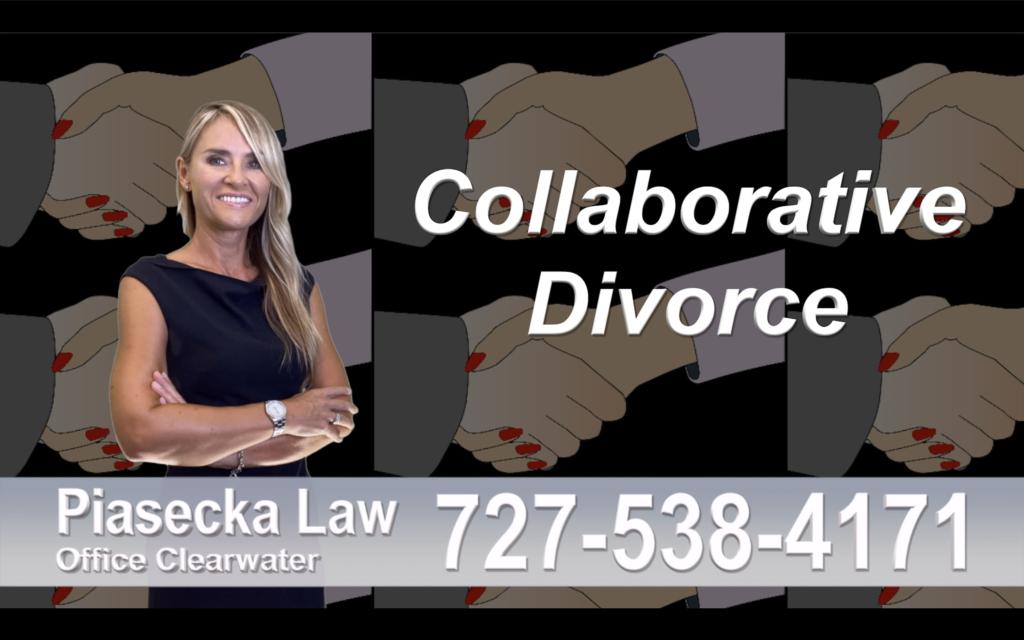 Divorce Attorney Clearwater Florida, Collaborative, Divorce, Attorney, Agnieszka, Piasecka, Prawnik, Rozwodowy, Rozwód, Adwokat, Najlepszy, Best, divorce, attorney