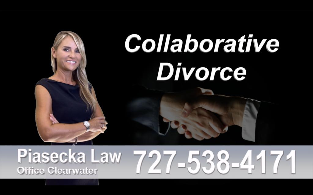 Divorce Attorney Clearwater Florida, Collaborative, Divorce, Attorney, Agnieszka, Piasecka, Prawnik, Rozwodowy, Rozwód, Adwokat, rozwodowy, Najlepszy, Best Lawyer