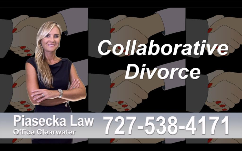 Divorce Attorney Clearwater Florida, Collaborative, Divorce, Attorney, Agnieszka, Piasecka, Prawnik, Rozwodowy, Rozwód, Adwokat, rozwodowy, Najlepszy Best Lawyers